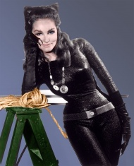 Ok, so I was only 4-years old.  But Julie Newmar as Catwoman set a high bar for my kindergarten classmates.   I actually met in person years later, Lee Meriwether (also in Barnaby Jones) in the Bahamas.  I don't know if she played Catwoman before or after Julie Newmar.  Anyone know?