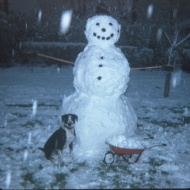 "Winter on Glenwood Avenue, Waukegan, c1964 - snowman with ""Dobie"""